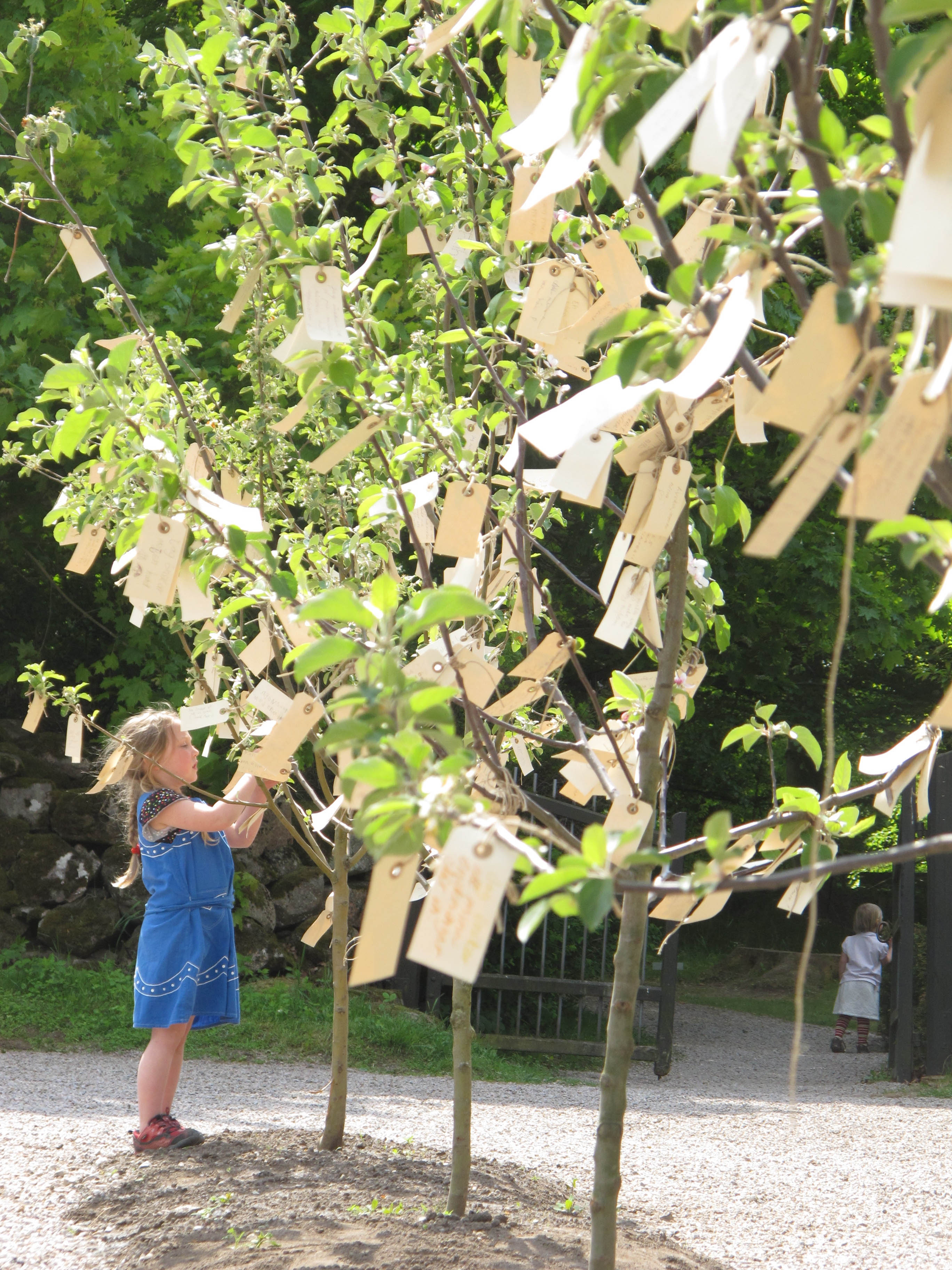 Yoko Ono, Wish Trees for Wanås, 2011