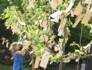 Yoko Ono, Wish Trees for Wanås, 2011